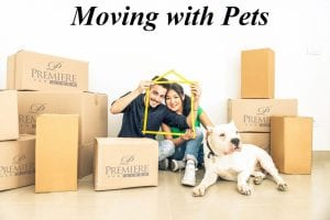 Moving with Pets - Tips