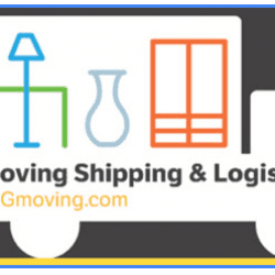 DG Moving Shipping and Logistics - Moving Feedback