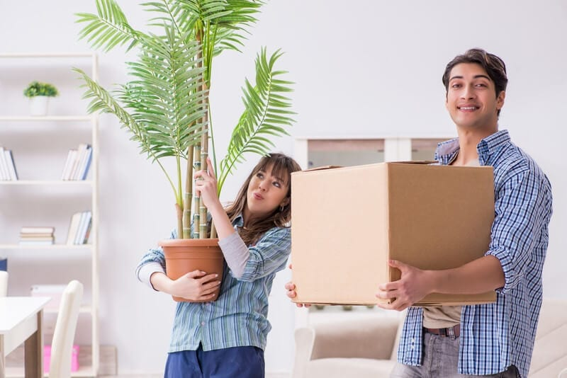 The Best Moving Services - Moving Feedback