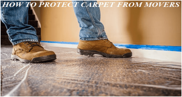 Tips to Protect Carpets - Moving Feedback