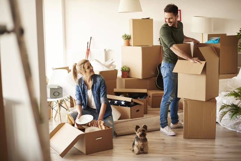 Best Ways to Handle a Small Move - Moving feedback
